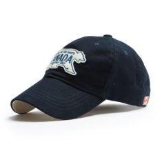 Polar Plate Cap, Side Navy